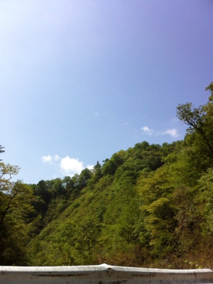 image-20120605131906.png